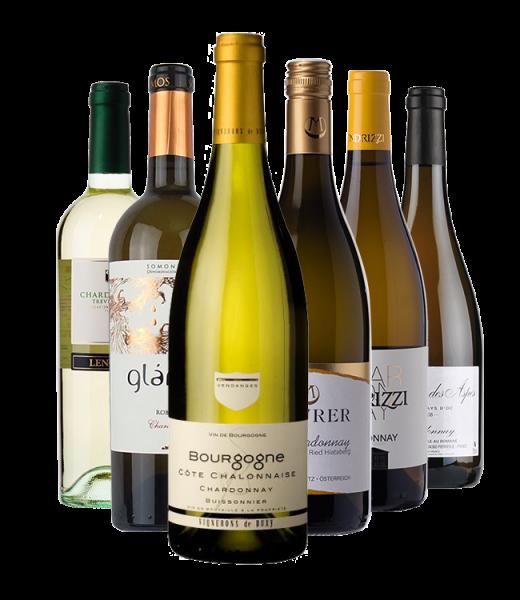 """Probierpaket """"Chardonnay für Einsteiger"""""""